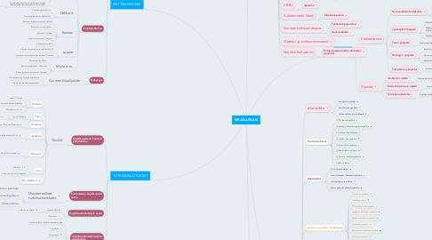 Mind Map: KIRJALLISUUS