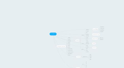 Mind Map: BULL&BEAR