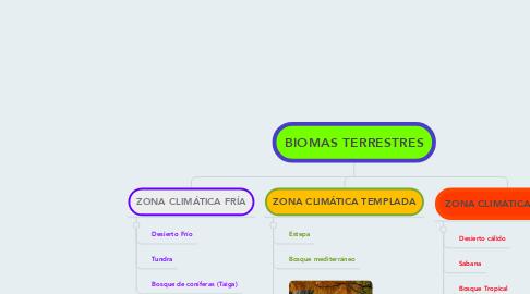 Mind Map: BIOMAS TERRESTRES