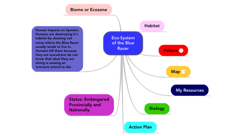 Mind Map: Eco-System