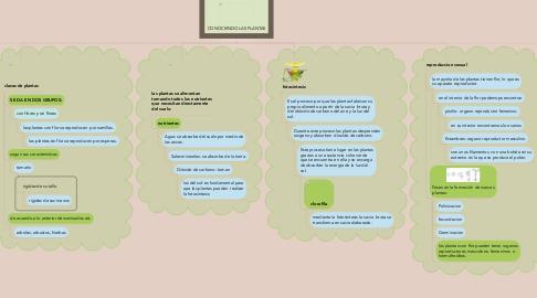 Mind Map: CONOCIENDO LAS PLANTAS