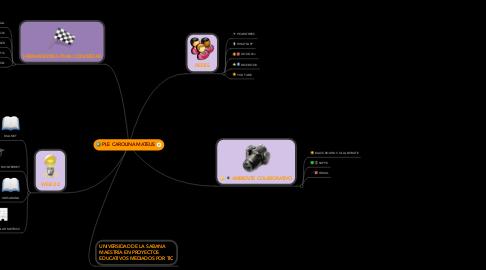 Mind Map: PLE CAROLINA MATEUS