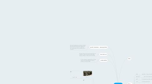 Mind Map: Holocaust