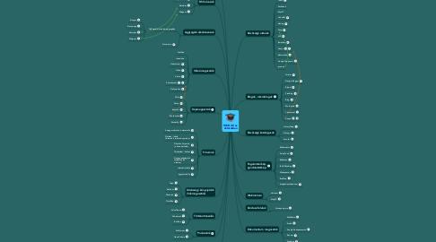 Mind Map: WEB 2.0 az oktatásban