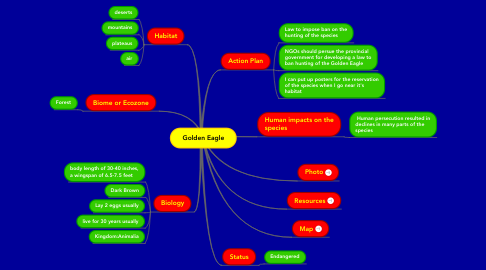 Mind Map: Golden Eagle