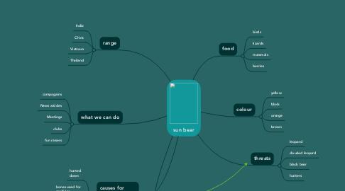 Mind Map: sun bear