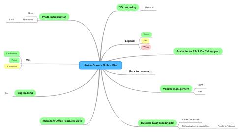 Mind Map: Anton Gurov - Skills - Misc