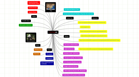 Mind Map: Giant Panda