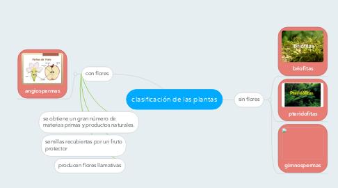 Mind Map: clasificación de las plantas
