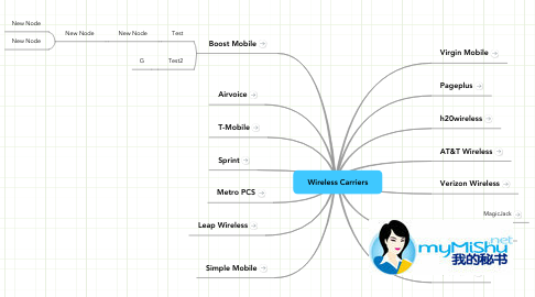 Mind Map: Wireless Carriers