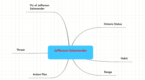 Mind Map: Jefferson Salamander
