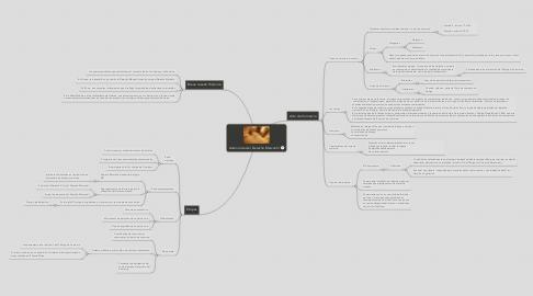 Mind Map: Autonomía del Derecho Mercantil
