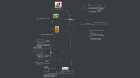 Mind Map: El Problema Agrario