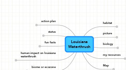 Mind Map: LouisianaWaterthrush
