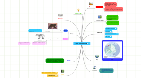 Mind Map: Polar Bear Mind Map