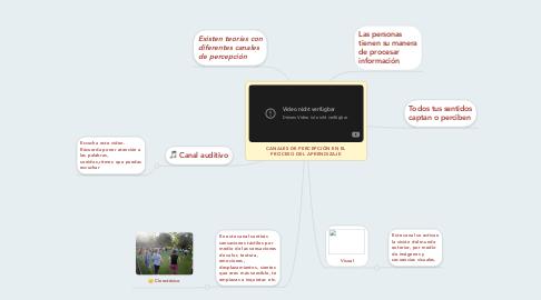 Mind Map: CANALES DE PERCEPCIÓN EN EL PROCESO DEL APRENDIZAJE