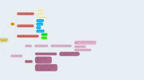 Mind Map: MANIFESTACIONS DE LA DINAMICA TERRESTRE