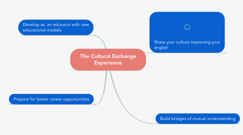 Mind Map: The Cultural Exchange Experience