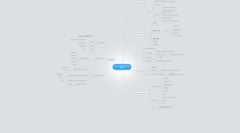 Mind Map: Lançamento Relâmpago WM10
