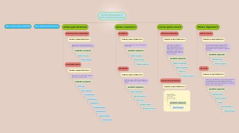 Mind Map: MICROORGANISMOS Y PATOLOGIAS ASOCIADAS