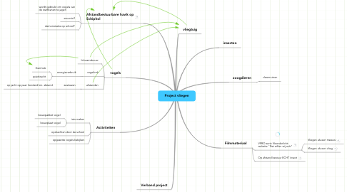 Mind Map: Project vliegen