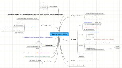 Mind Map: New IT Dept Issues & Concerns