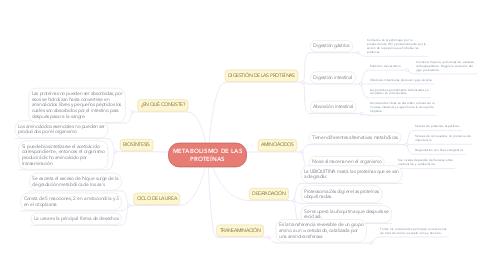 Mind Map: METABOLISMO DE LAS PROTEÍNAS