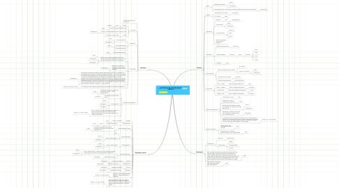 Mind Map: METODOLOGIA PROGRAMACIÓ