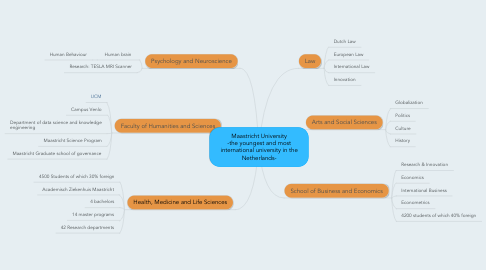 Mind Map: Maastricht University -the youngest and most international university in the Netherlands-
