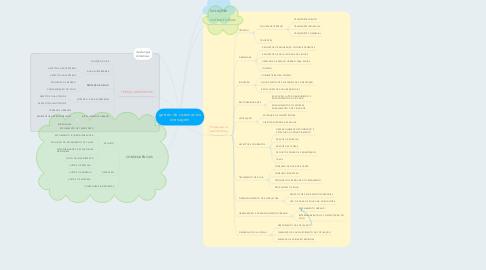 Mind Map: gestão de sistemas de drenagem