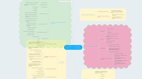 Mind Map: TECNOLOGÍA E INFORMÁTICA EDUCATIVA Y EL E-LEARNING