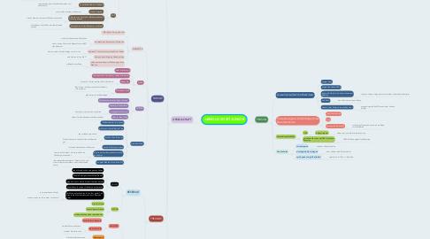 Mind Map: ARNOLD SPIRIT JUNIOR
