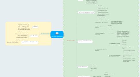 Mind Map: Tipos de Organización.