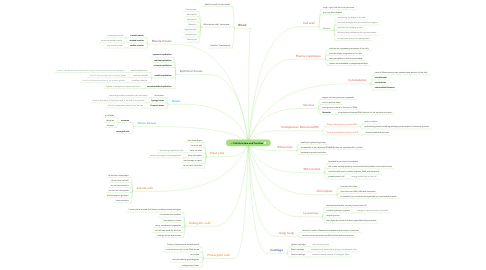 Mind Map: Cell structure and function