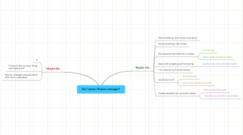 Mind Map: Do I need a finance manager?