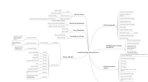 Mind Map: Lanzamiento NegocioALaCarta.com