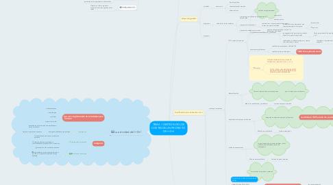 Mind Map: TEMA 1 GESTION DE LOS COSTES DE UN PROYECTO DE I+D+I