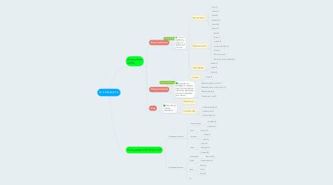 Mind Map: EL ESQUELETO