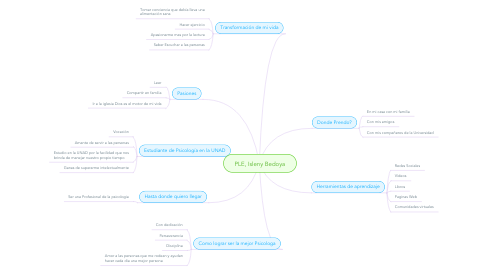 Mind Map: PLE, Isleny Bedoya