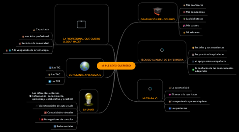 Mind Map: MI PLE LEYDI GUERRERO