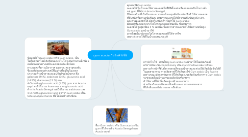 Mind Map: gum acacia กัมอะคาเซีย