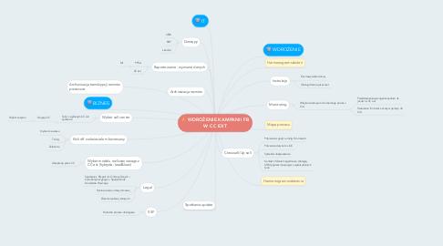 Mind Map: WDROŻENIE KAMPANII FB W CC EXT