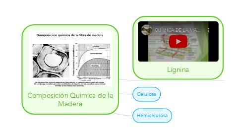 Mind Map: Composición Quimica de la Madera