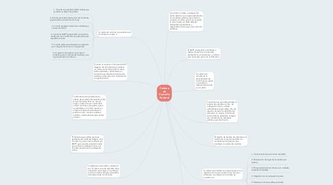 Mind Map: Cadena de Custodia Federal