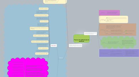Mind Map: Procesos de aplicaciones de auditorias