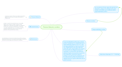Mind Map: Persona Natural y Juridica