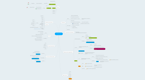 Mind Map: Introducción