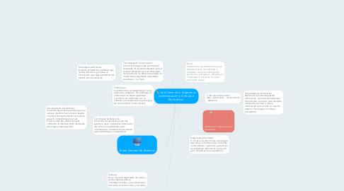 Mind Map: 1era Clase de la asignatura: Administración y Gobierno Electrónico.