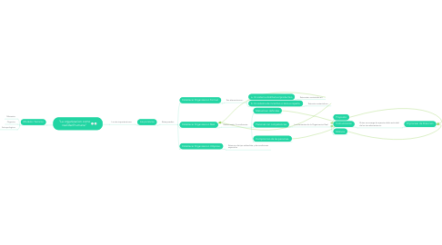 """Mind Map: """"La organizacion como realidad humana"""""""