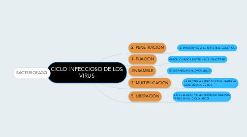 Mind Map: CICLO INFECCIOSO DE LOS VIRUS